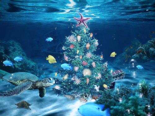 sea_christmas