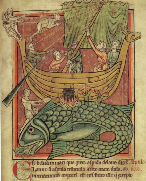 Sea Monsters (C van Duzer) 009 A ship landing on a whale mistaken for an island in an early thirteeth century bestiary. London, British Library, Harley MS 4751, f. 69r, c. 1230-40.jpg