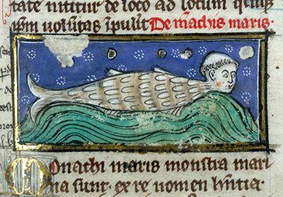 thomas-of-cantimprc3a9-liber-de-natura-rerum-france-ca-1290-valenciennes-bibliothc3a8que-municipale-ms-320-fol-117r.