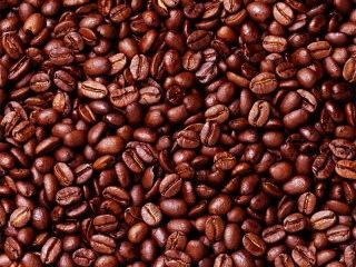 etiopia cafe