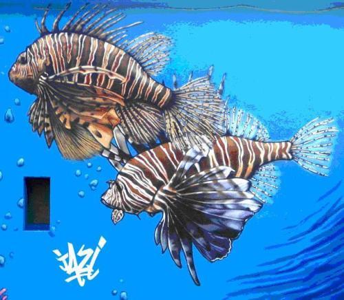Ilustración 8. Graffiti de Jazi en Nyon (Suiza)