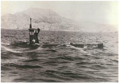 Foca 1954-1967