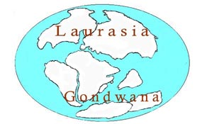 Gondwana_u.Laurasia50