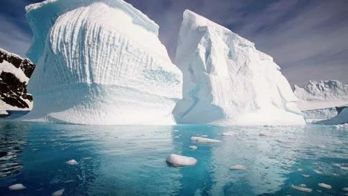 artico-icebergs