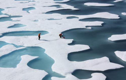 artico-midiendo hielo