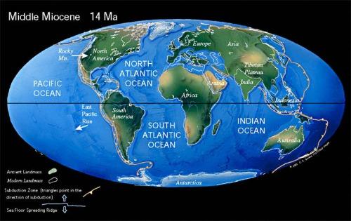 Mioceno. Fuente