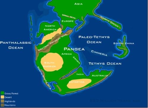 La tierra hace 230 millones de años. En ella se pueden distinguir ya las dos grandes masas de agua citadas en el texto: Panthalassa y Tetis. Fuente.