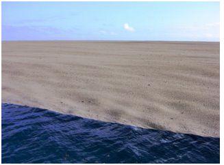 Sandy. Fuente