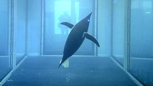 Robot barracuda para eliminar minas submarinas