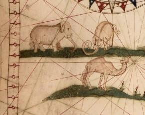 Elefantes y camello mejorado