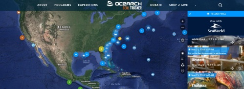 interfaace ocearch