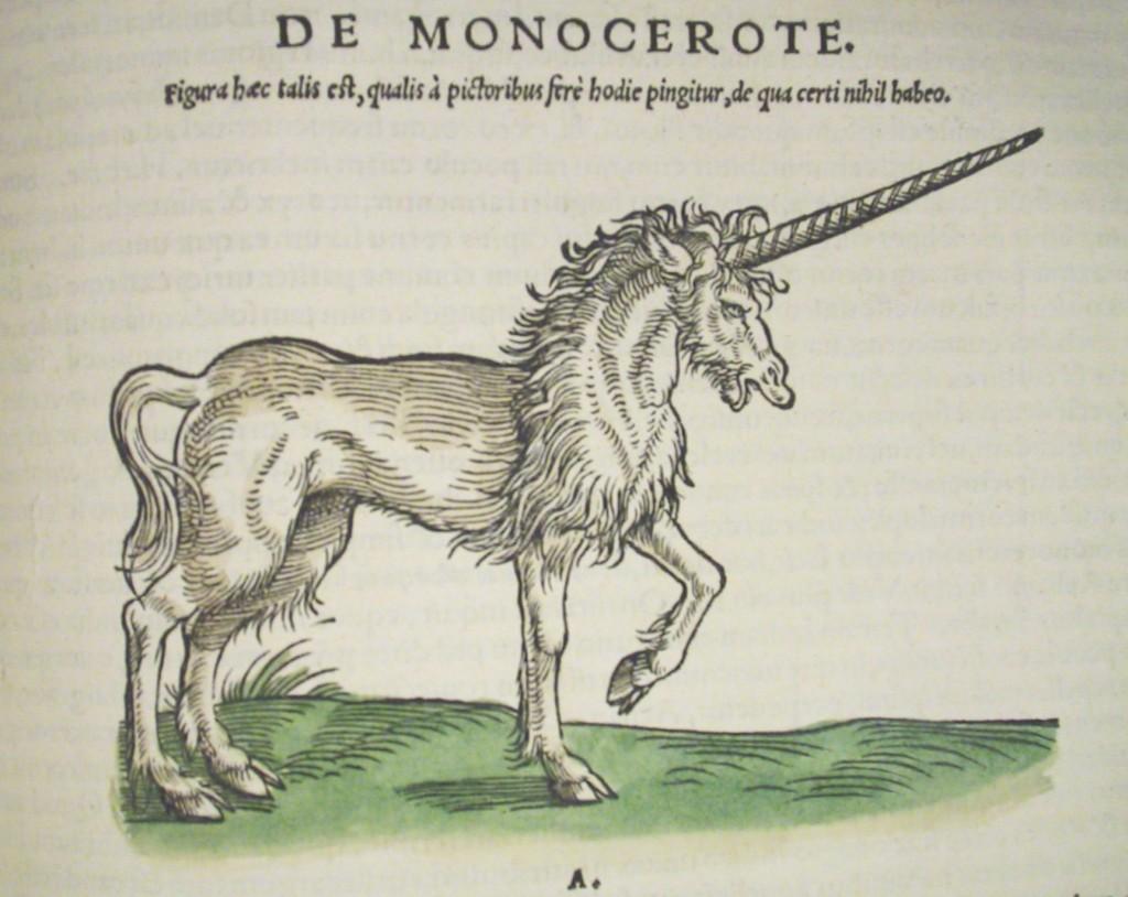 Unicorn2-1024x814